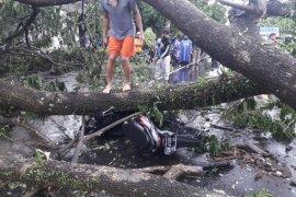 Cuaca ekstrem di Lombok telan korban jiwa