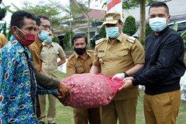 Kabupaten Dairi terima bantuan 15 ton benih  bawang