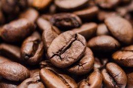 Jakarta Coffee Week 2020 diadakan secara daring