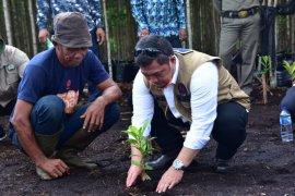 Penanaman mangrove,  ini harapan Bupati Bengkalis