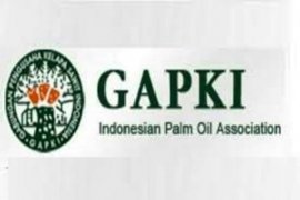 Palm oil sector needs strategy to tackle pandemic challenge: Gapki
