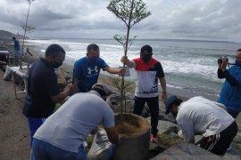 Jasa Raharja Bali tanam pohon di Pantai Pererenan peringati HUT ke-60