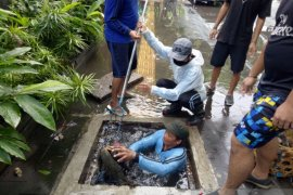 Dinas PUPR Denpasar bersihkan drainase untuk  cegah banjir