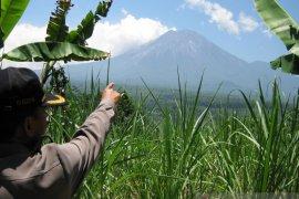 Gunung Semeru luncurkan guguran  lava pijar