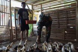 Kasad tegaskan TNI AD siap bantu ketahanan pangan di masa pandemi