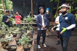 Menikmati sajian Rumah  Bonsai Tambi Trubus di kawasan ekowisata Sukorejo