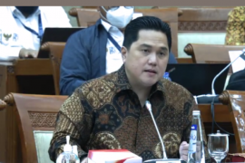 Erick Thohir memaparkan tiga tahapan peta jalan BUMN periode 2020-2024