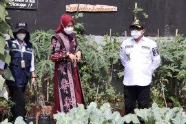 Istri dan anak Wali Kota Malang juga terinfeksi COVID-19