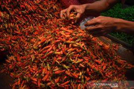 Harga cabai rawit merah tembus Rp100 ribu