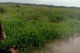 Semua objek wisata di Kabupaten Lampung Timur tutup saat Lebaran