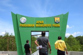 KKP nilai kawasan mangrove Pariaman Sumbar dapat menjadi wisata minat khusus