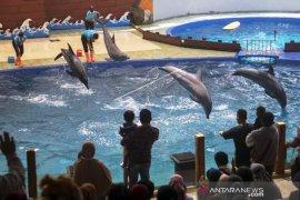 Wisata Batang Dolphin Center Page 1 Small