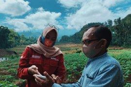 """BNI lakukan uji coba \""""smart farming\"""" di lima provinsi"""