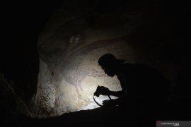 Lukisan gua di Leang Tedongnge petunjuk  penting jalur migrasi purba