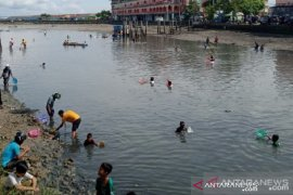 BMKG: Kemunculan ikan dipinggir laut Baubau terjebak air surut