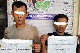 Polres Payakumbuh ringkus empat pengedar sabu-sabu dalam sehari