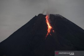 Mount Merapi spews hot lava for 36 times.