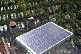 Pemanfaatan Tenaga Surya Di Kawasan Pertanian