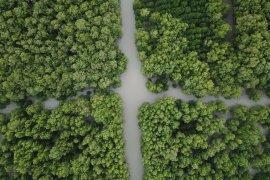 Sebanyak 27 provinsi telah tetapkan Perda Zonasi Pesisir