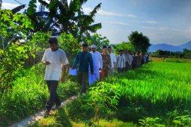 Alih fungsi lahan di Kota Mataram berpotensi sasar LP2B
