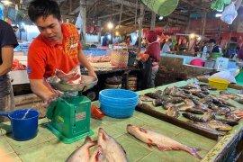 Pasokan berkurang, harga ikan di Palembang naik