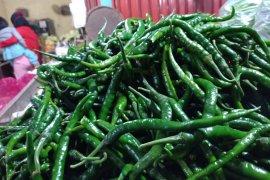 Pada musim hujan, harga cabai di Pasar Jatimuyo naik Rp5.000