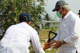 Kementerian PUPR tanam 6.600 pohon jamin penghijauan jalan tol