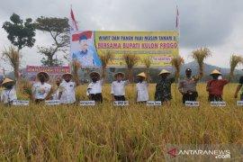 Mendongkrak pendapatan petani Kulon Progo dengan tiga komoditas unggul