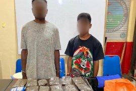 Polisi Jayapura tangkap empat pengedar ganja