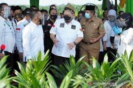 Ketua DPD RI apresiasi keberhasilan Barru genjot produksi pertanian