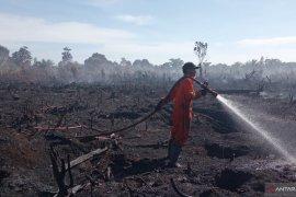 Tim gabungan Agam lanjutkan pemadaman kebakaran lahan sawit