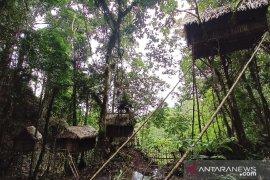 Objek wisata rumah Pohon Donggala Page 4 Small