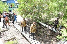 Mangrove salah satu solusi atasi abrasi pantai di Bengkalis