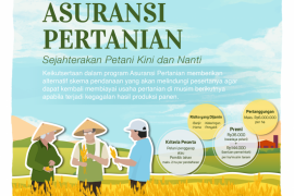 Distan targetkan ribuan hektare sawah  terdaftar asuransi