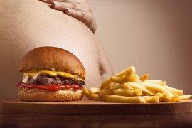 Hari Obesitas Sedunia, kenali pemicu dan cara  penanganannya