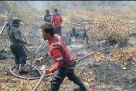Titik panas melejit di Pelalawan, tim masih berjibaku padamkan api