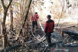 Karhutla di ujung Kabupaten Siak, Tim Fire Fighter RAPP bantu padamkan