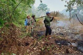 Luas lahan yang terbakar di Riau mencapai 248 hektare, begini penjelasannya