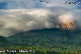 BTNGM memantau kerusakan hutan terdampak erupsi Gunung Merapi