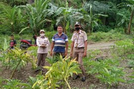 Karantina Pertanian Manado menggelar Safari Ekspor dorong