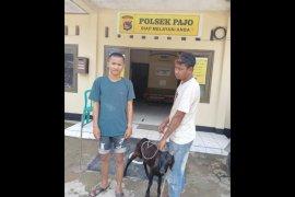 Dua pemuda ingusan di Dompu gagal curi kambing keburu kepergok warga