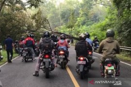 BPBD Gunung Kidul mengimbau masyarakat waspadai angin kencang