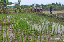 Polres Mimika lakukan pembinaan petani Kampung Mulia Kencana