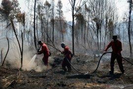 Cuaca panas dan angin hambat pemadaman kebakaran Cagar Biosfer Riau, begini penjelasannya