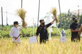 Pemerintah dorong pengembangan agrowisata di seluruh Indonesia
