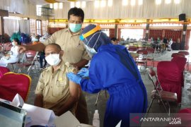 Satu tahun pandemi COVID-19 menginfeksi 5.000 warga Mimika