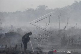 Pemadaman Karhutla Riau