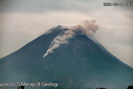 Mt. Merapi belches ash 1.2 km into the sky