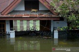 Banjir Di Makasar