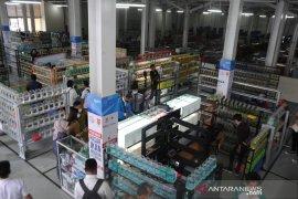 Sentra ikan hias resmi dibuka di Pasar Ikan Modern Palembang Page 2 Small